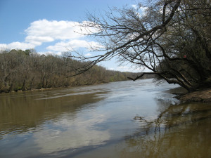 Campbell Creek at Cape Fear River