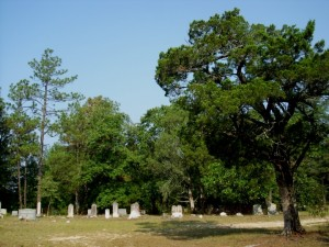 Browns Chapel Cemetery-2