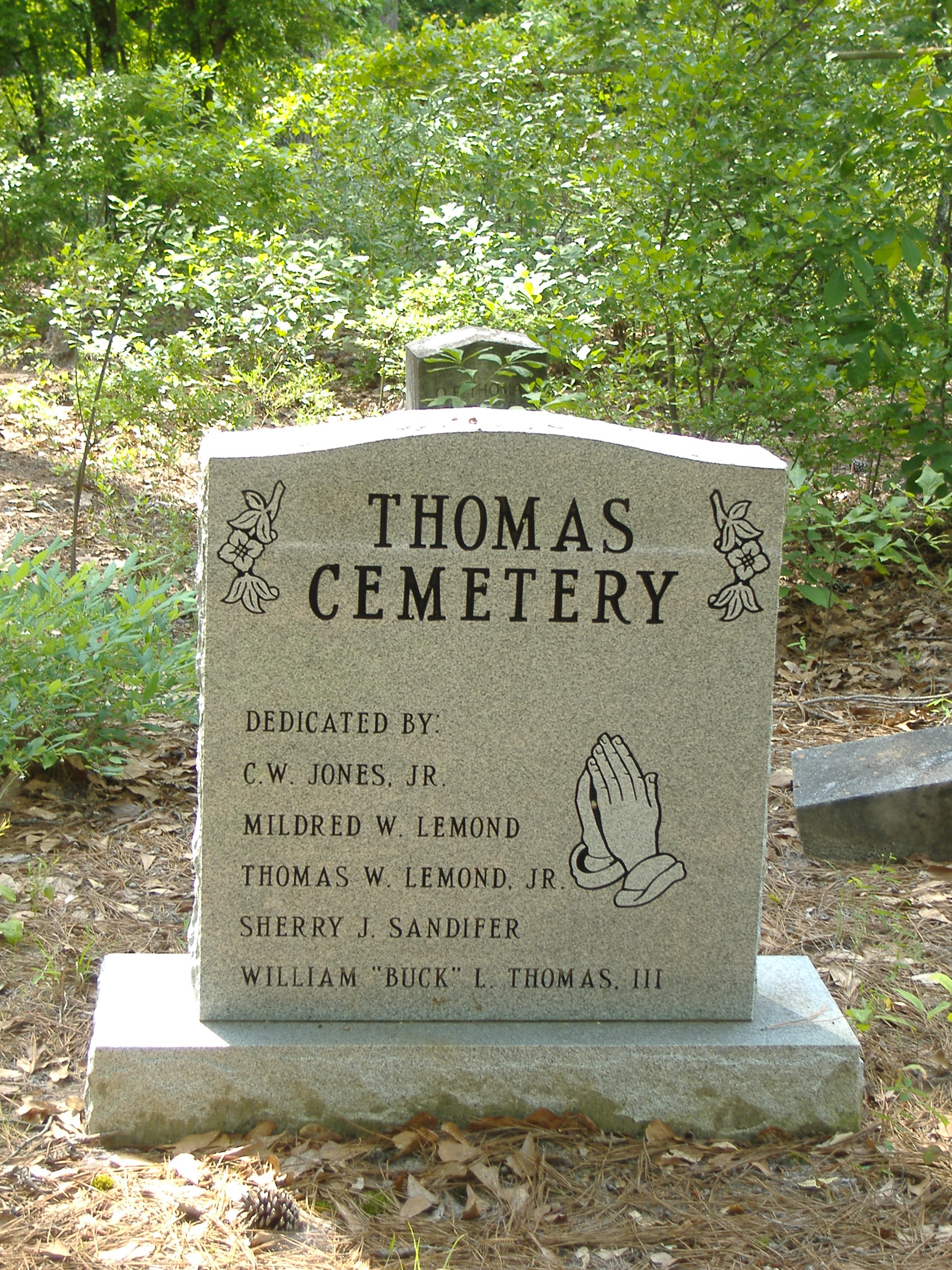 52 Ancestors Weeks 4 & 5 – The elusive Billy Thomas's