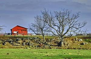 Rural Ohio Farm
