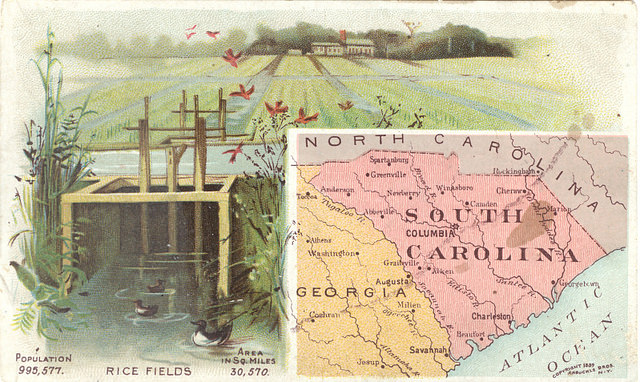 Map showing SC, NC, Georgia, and the Atlantic Ocean. Left and above the map is a drawing of rice fields and a large house.