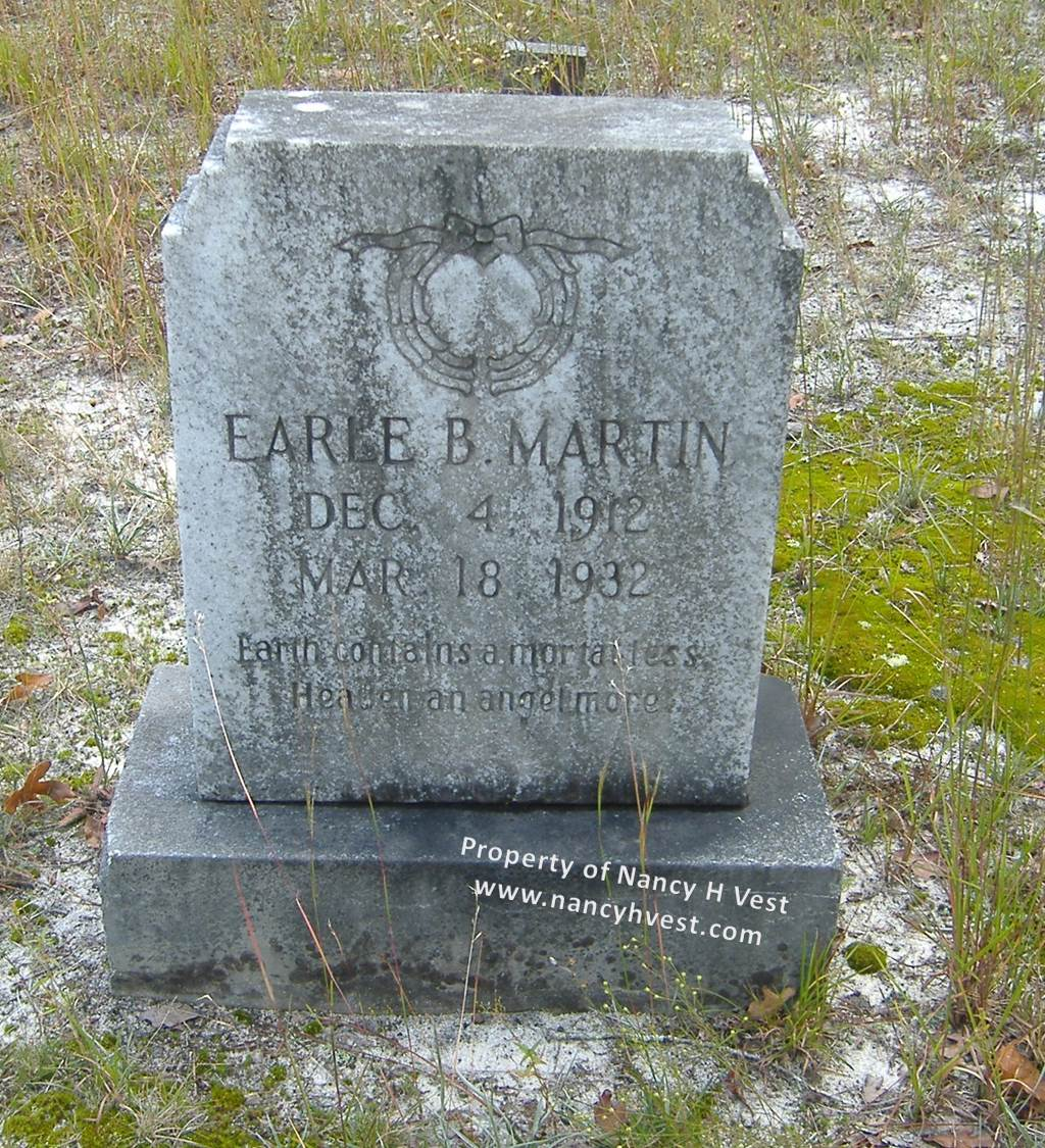 Photo of Earl B. Martin's gray marble gravestone with his name, birth and death dates, what appears to be an engraving of a wreath with a bow, and the verse I transcribed in the text of the blog post.