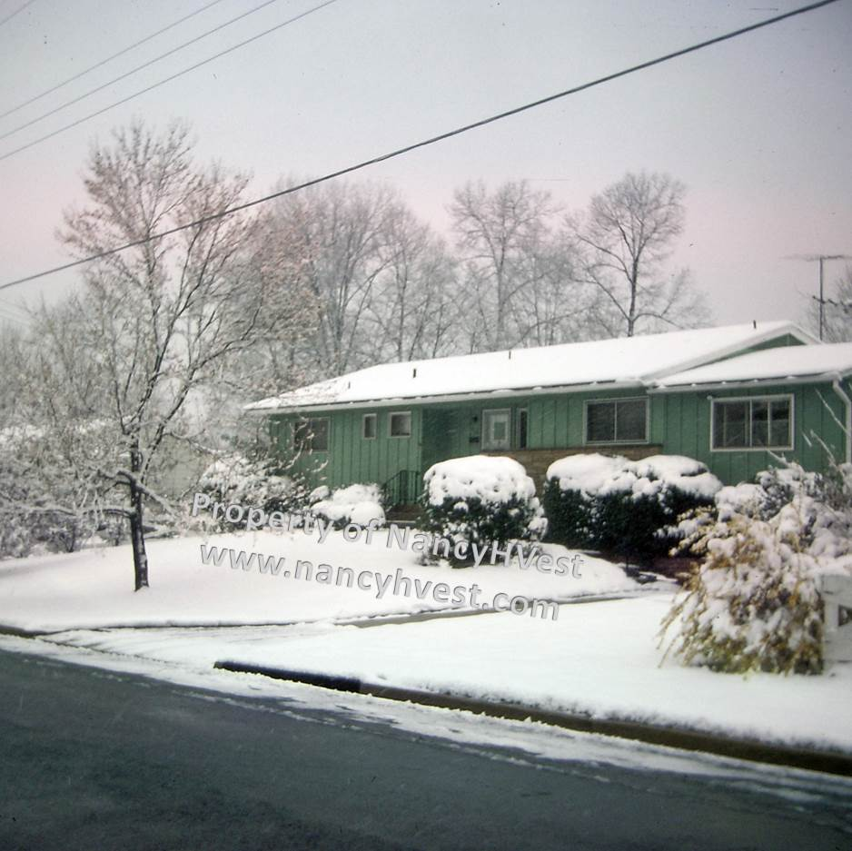 color photo of a green ranch-style house on a snowy day. A few mature trees and shrubs in front of the house.