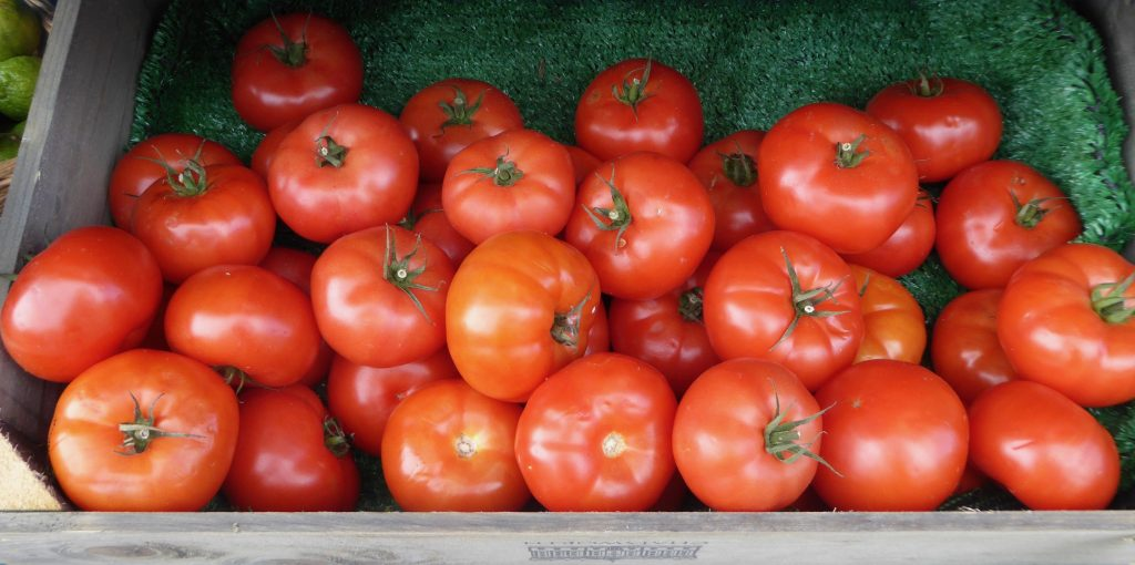 Color photo of red, ripe tomatoes