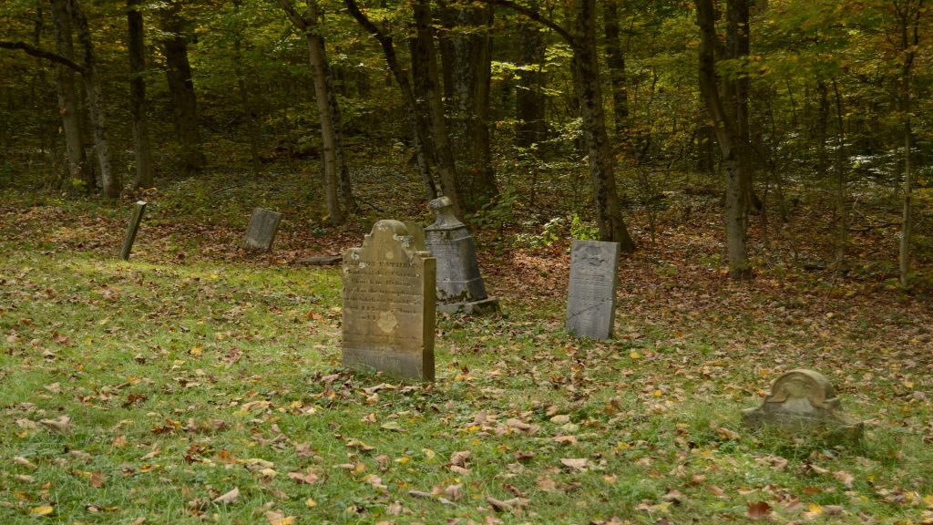 Color photo of grassy cemetery with several gravestones.